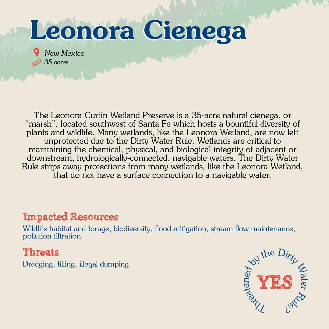 Leonora Cienega Card back